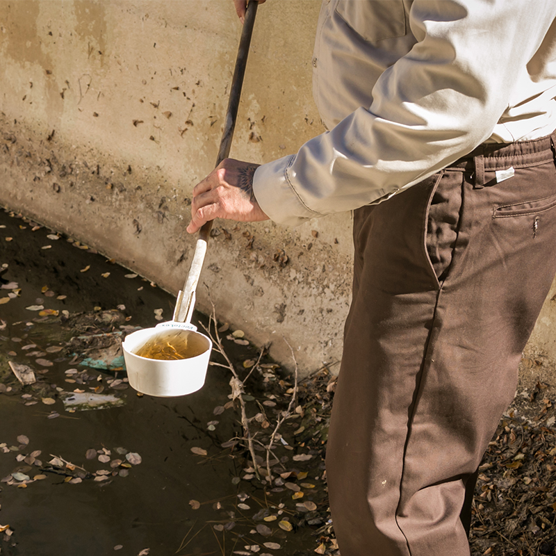 Man sampling contaminated water